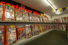 gallery_Mr-Fireworks-Discount-Superstore-0028